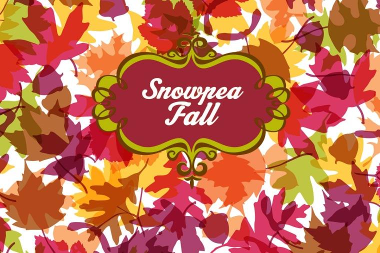 SnowpeaFall14